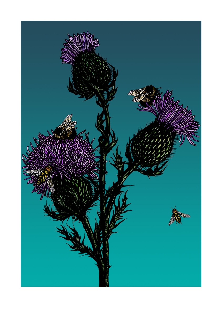 Thistles & Bees on Blue